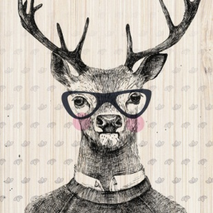 glass-story-optometrist-name-card-deer-glasses-wood
